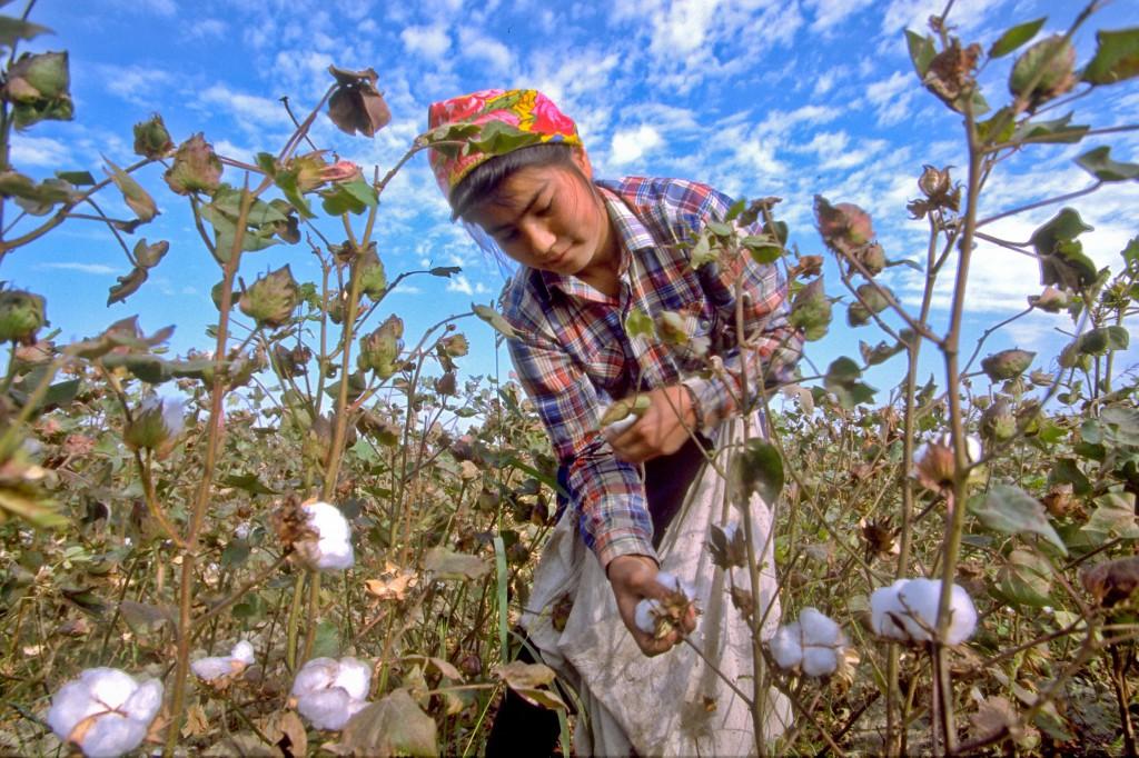 Oubékistan Popp, © ppc