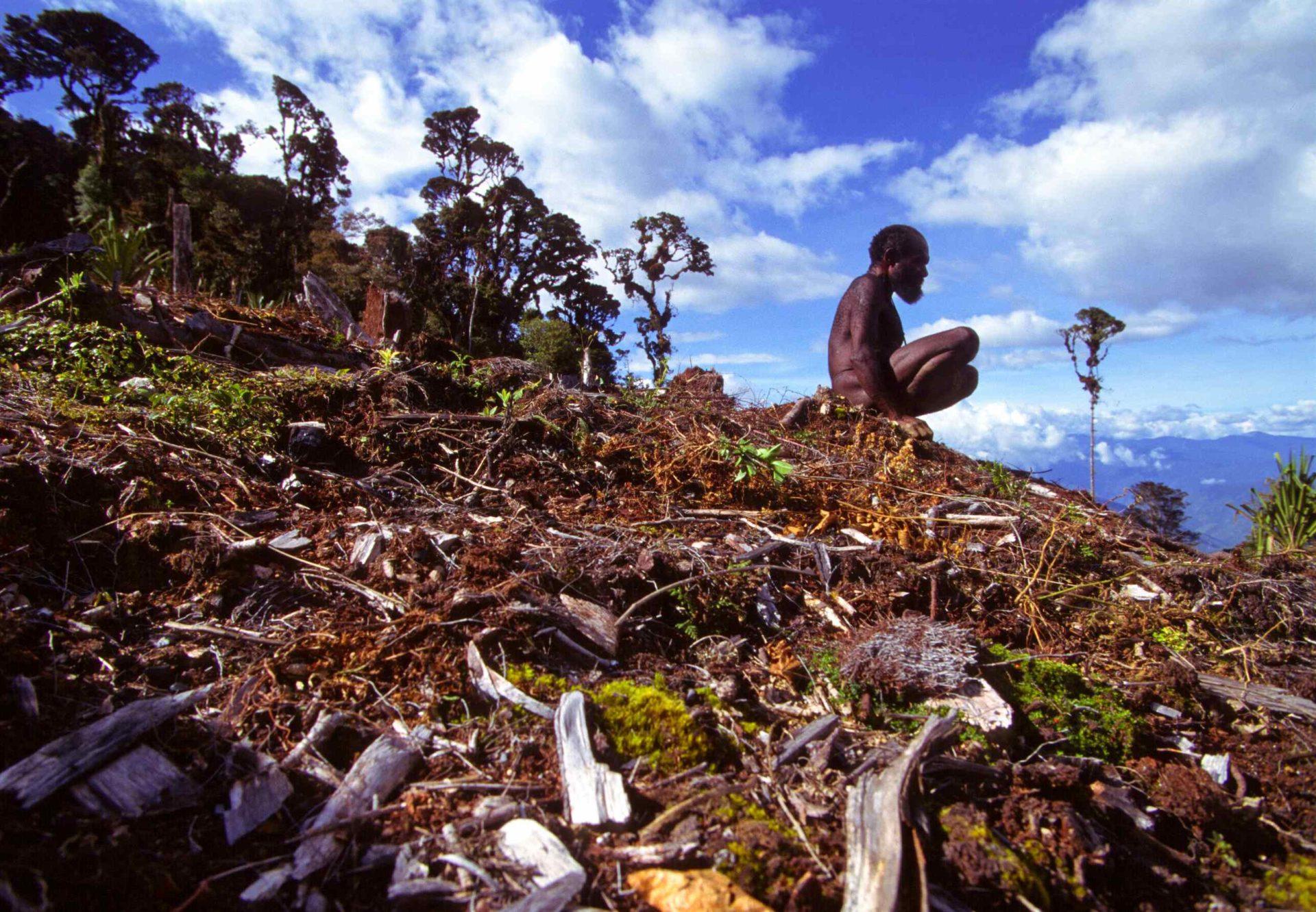 Dani, vallée de la Baliem, Papouasie Occidentale © ppc