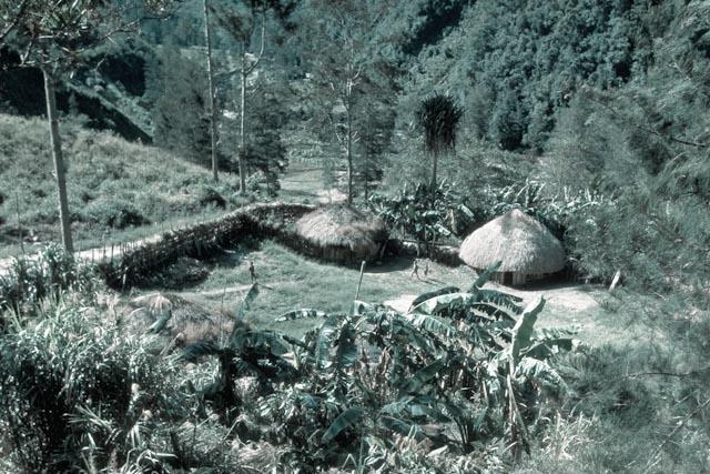 Papouasie Occidentale, Hautes terres, maison Dani © www.philippepataudcélérier.com