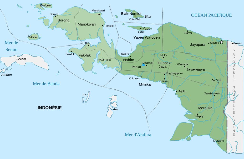 Nouvelle-Guinée Occidentale est aujourd'hui divisée en deux provinces : Papouasie et Papouasie Occidentale © DR