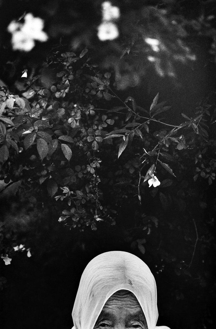 Ronces et vieille femme, Hapcheon, 1994 © Lee Gap Chul