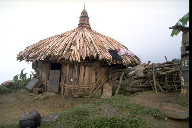 Habitat papou © ppc